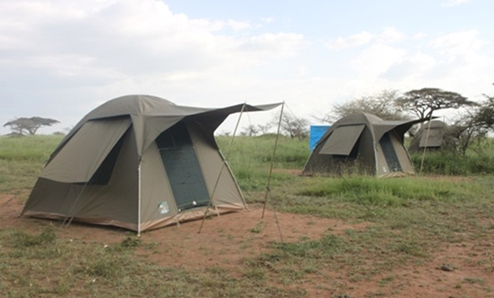 5 Days Budget Camping Safari -  Northern Tanzania